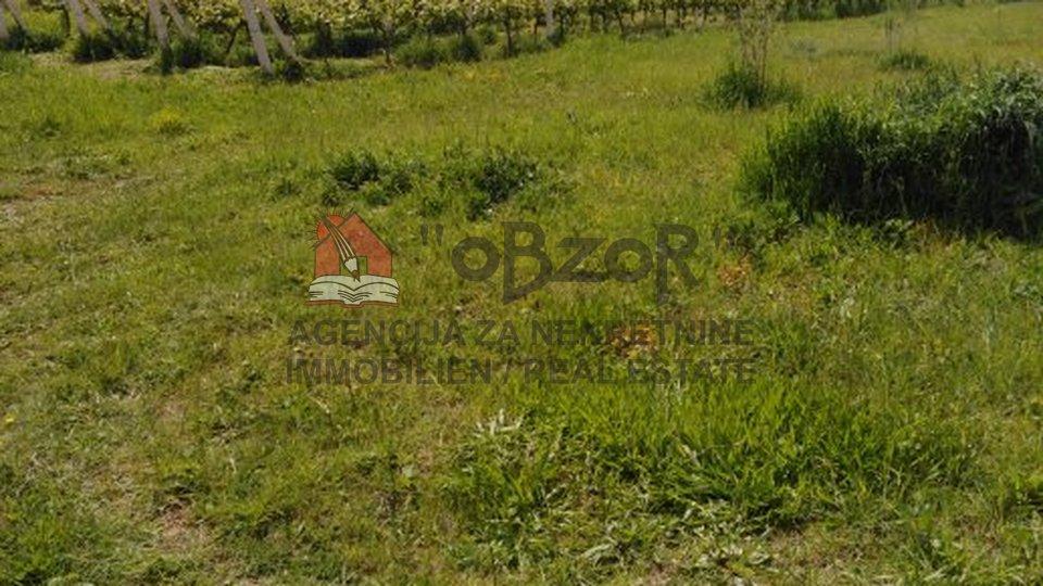 Grundstück, 9240 m2, Verkauf, Nin - Ninski Stanovi