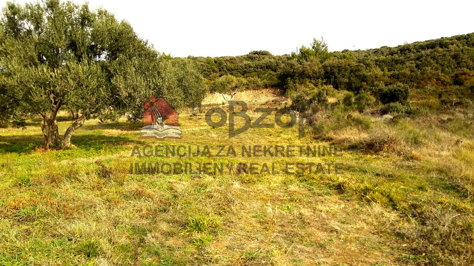 Land, 500 m2, For Sale, Sveti Filip i Jakov - Sveti Petar na Moru