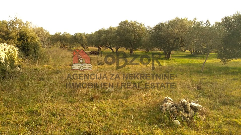 Land, 1611 m2, For Sale, Sveti Filip i Jakov - Turanj
