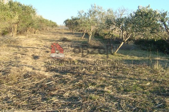 Land, 1339 m2, For Sale, Nin