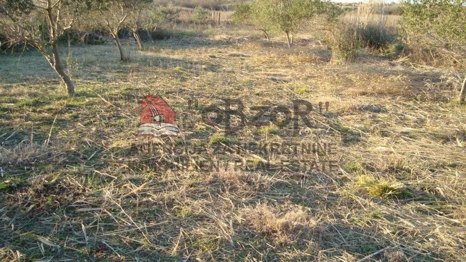 Zemljišče, 1339 m2, Prodaja, Nin