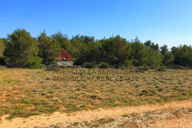 Land, 719 m2, For Sale, Vir